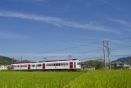 貴志川線いちご電車